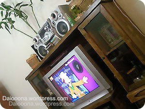 https://daiooona.files.wordpress.com/2010/09/13.jpg